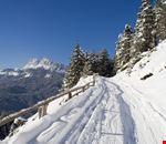 San Vito di Cadore neve