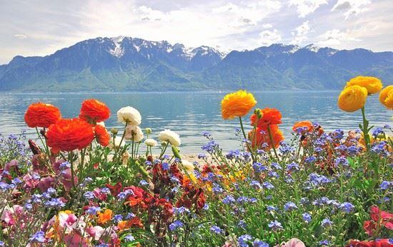 lago_di_Ginevra