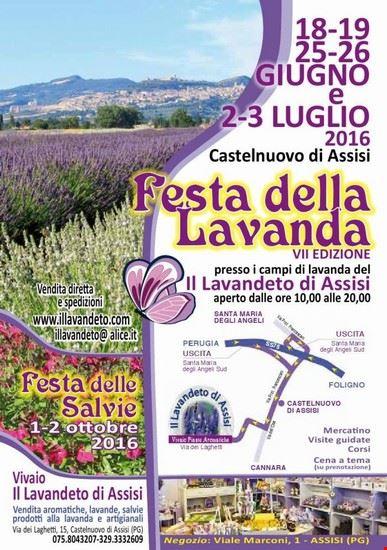 Festa della lavanda Italia 2016