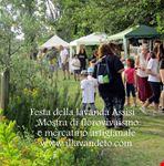festa della lavanda italia 2016 assisi