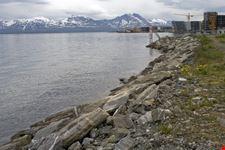 bergen fiordi