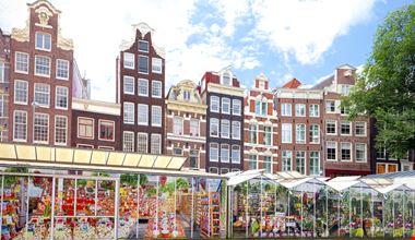 Amsterdam Mercato Fiori_556975273