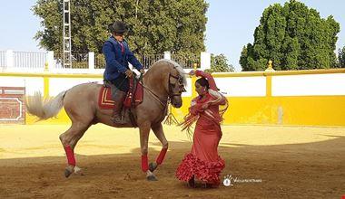 Cavallo andaluso e ballerina flamenco_Voicesearch.travel