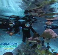 Florida Keys_Marathon_aquarium Encounters