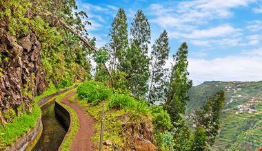 Madeira Levadas_143054959