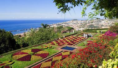 Madeira_223713772