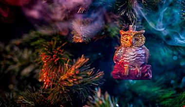 mercatini di Natale Marche