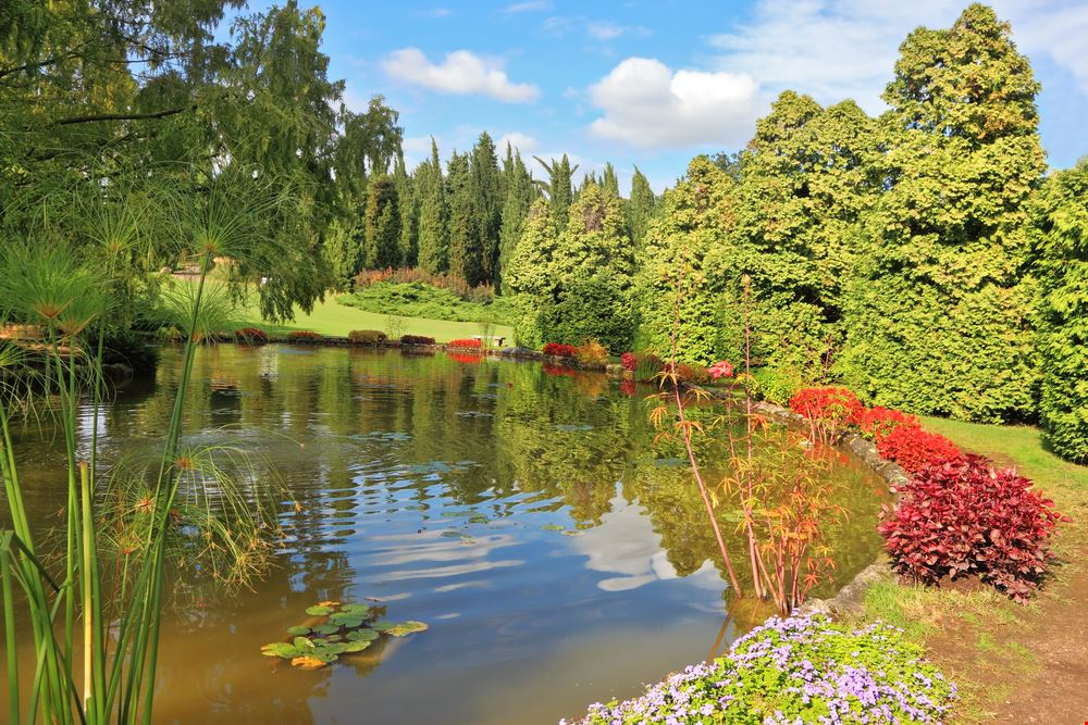Parco Sigurtà_107818040