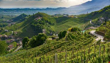 prosecco-hills
