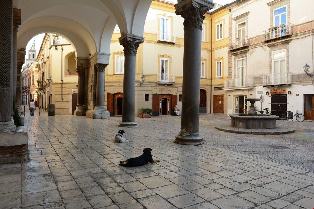 Sant'Agata de'Goti_663933157