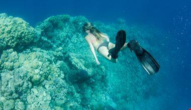 snorkeling_maldive