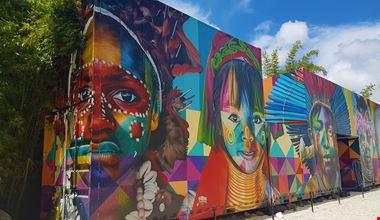 Wynwood_murales_indios