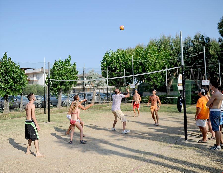 Torneo di pallavolo