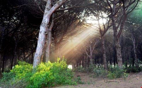Parco della Gallinara