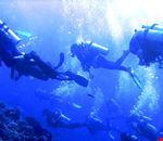Diving in Liguria