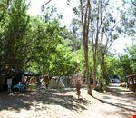 Campeggio a Isolabona, Imperia