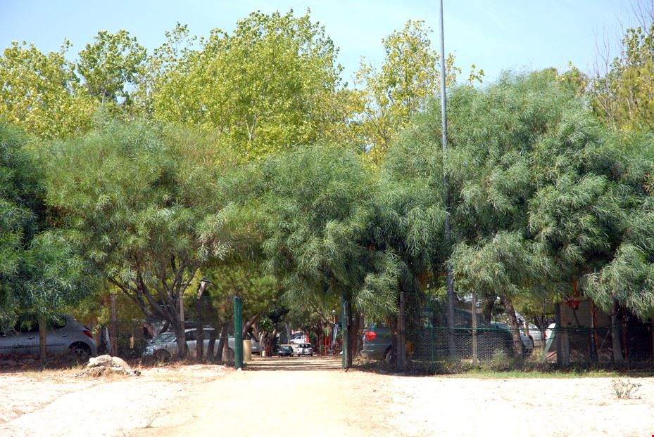 Ingresso del camping La Rocca, Badolato, Calabria