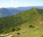 Escursioni guidate in Trentino Alto Adige