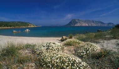 Spiaggia bianca della Sardegna