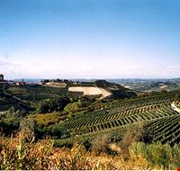 Camping nelle Langhe