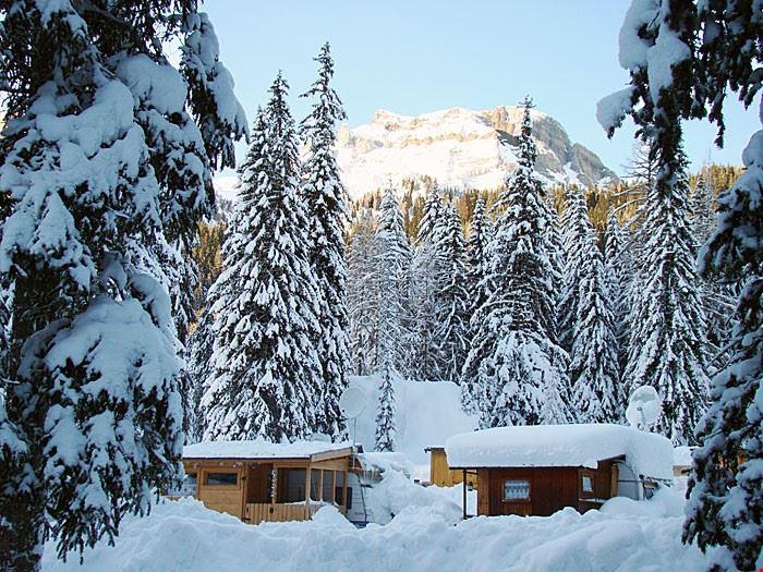 Camping Cadore in Inverno