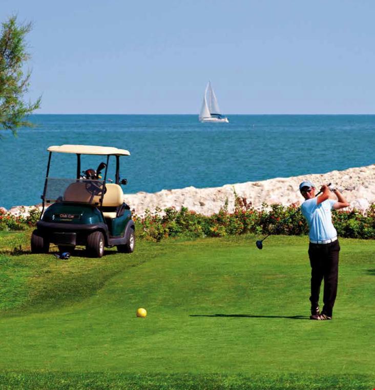 Campi da golf e minigolf