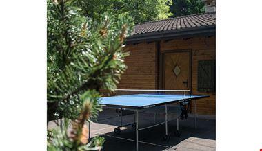 Tavolo da ping pong