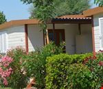 Bungalows nel camping