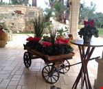 Bed and Breakfast nel Salento