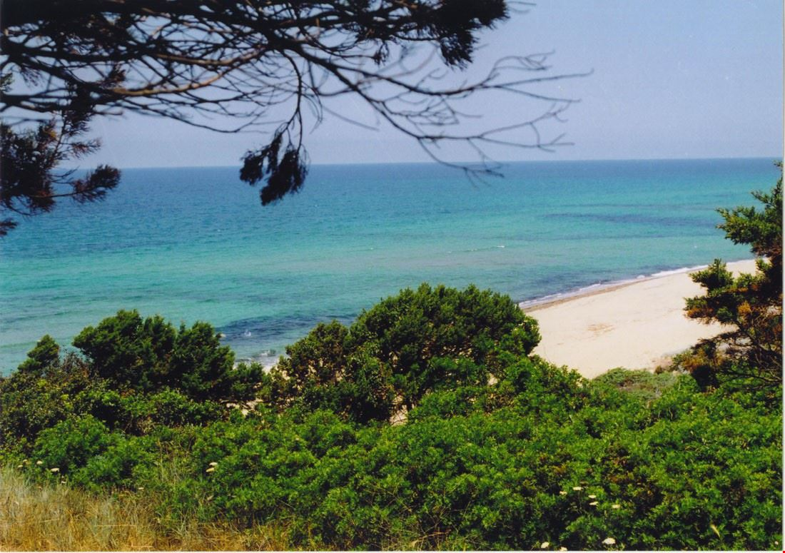 Spiaggia in Sardegna