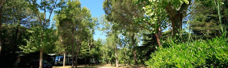 Camping Del Forte