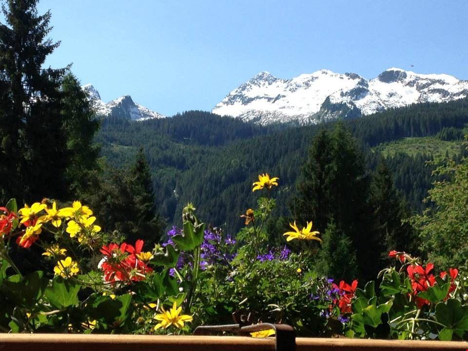 Camping Bellamonte, Trento