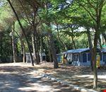 Campeggio in Emilia Romagna