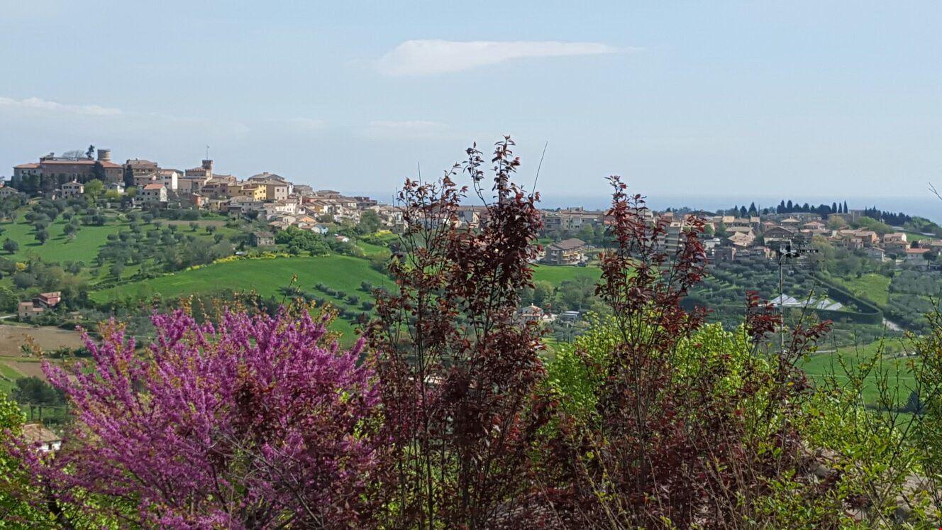 Camping sulle Colline di San Costanzo, Marche