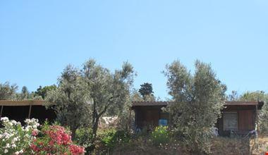 Camping Village a Campiglia Marittima, Livorno