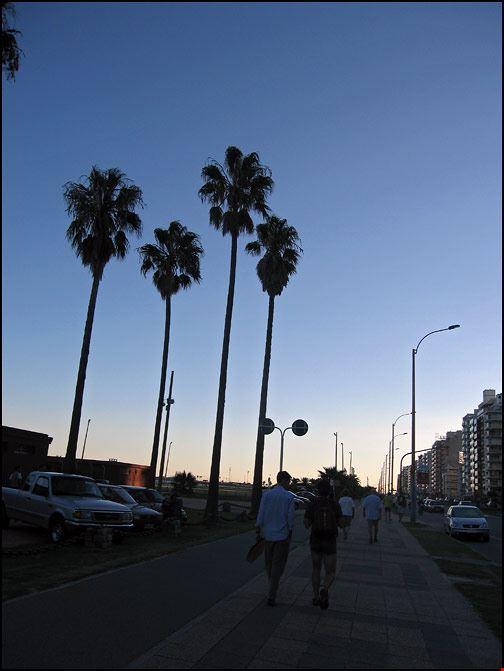 1268_18.jpg
