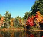 new-england-fall-foliage-21.jpg